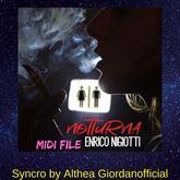 Enrico Nigiotti - Notturna