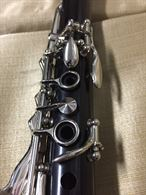 Clarinetto in Sib Salterio