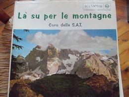 Disco in vinile - Là su per le montagne