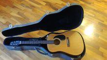 Chitarra acustica Samick LW15